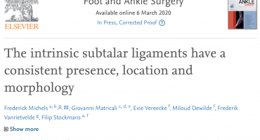 The intrinsic subtler ligaments have a consistent presence, location and morphology